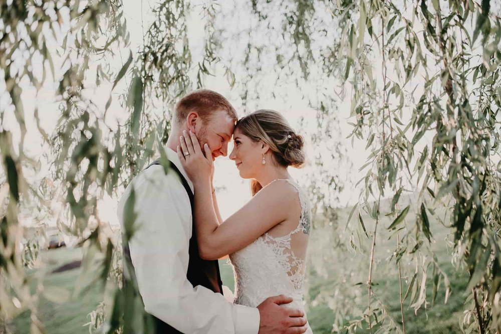 bride and groom in willow tree 2.jpg