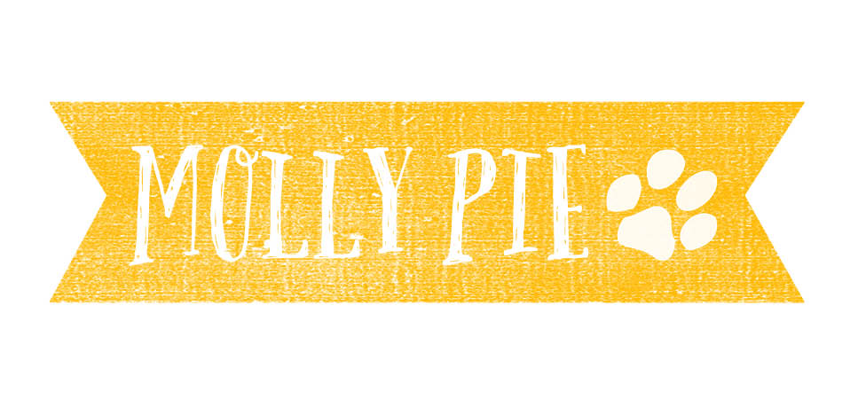 MollyPie.jpg