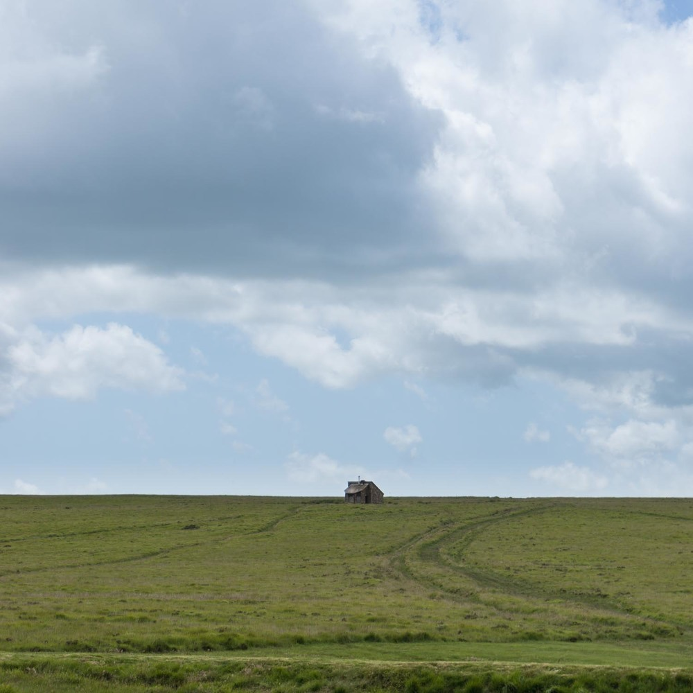 Lonely on Dartmoor