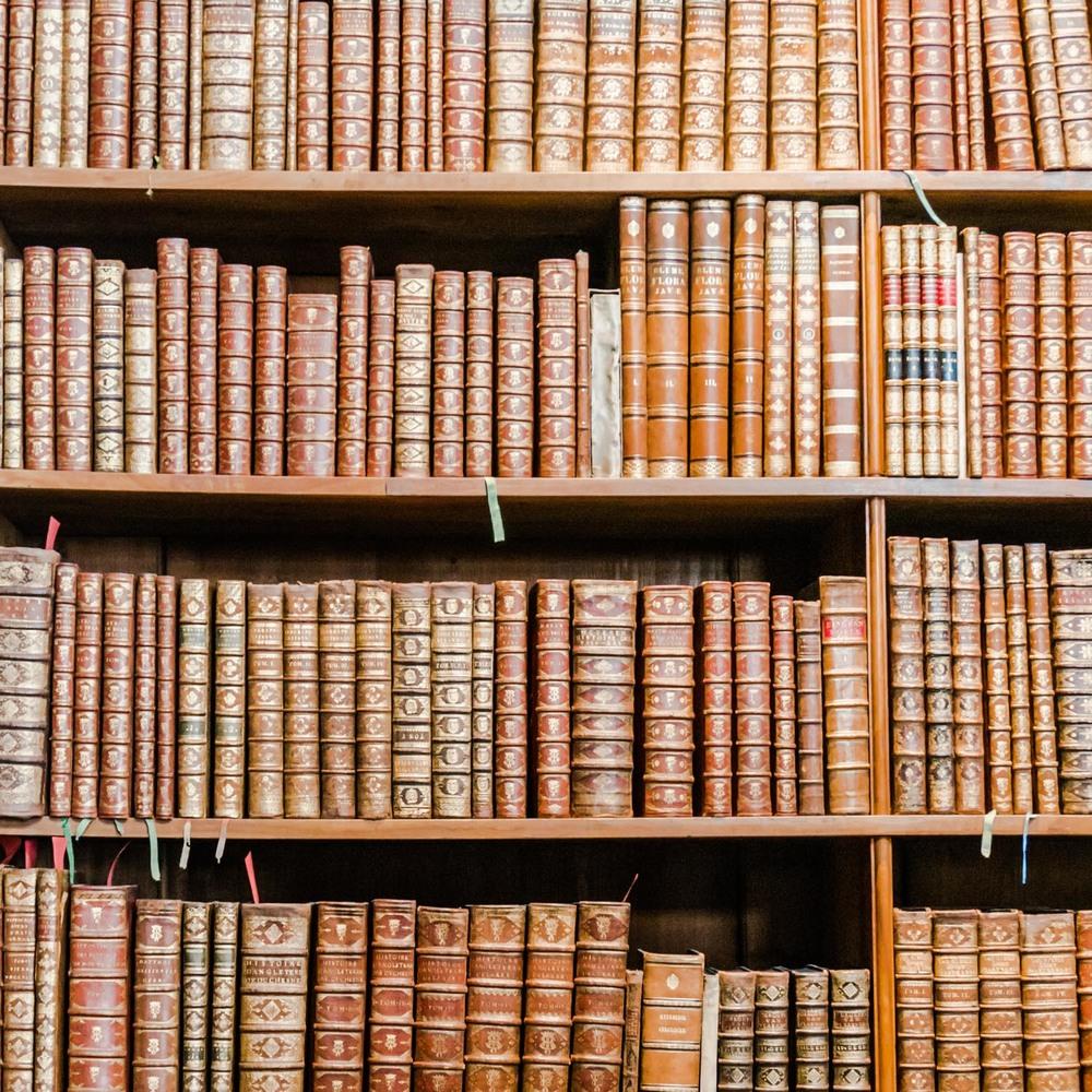 Vienna state hall library bookshelves
