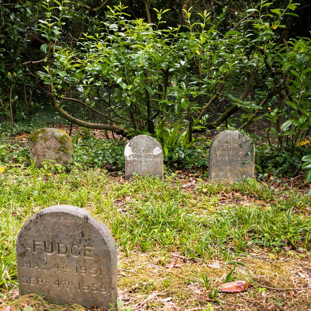 The sweet little pet cemetery