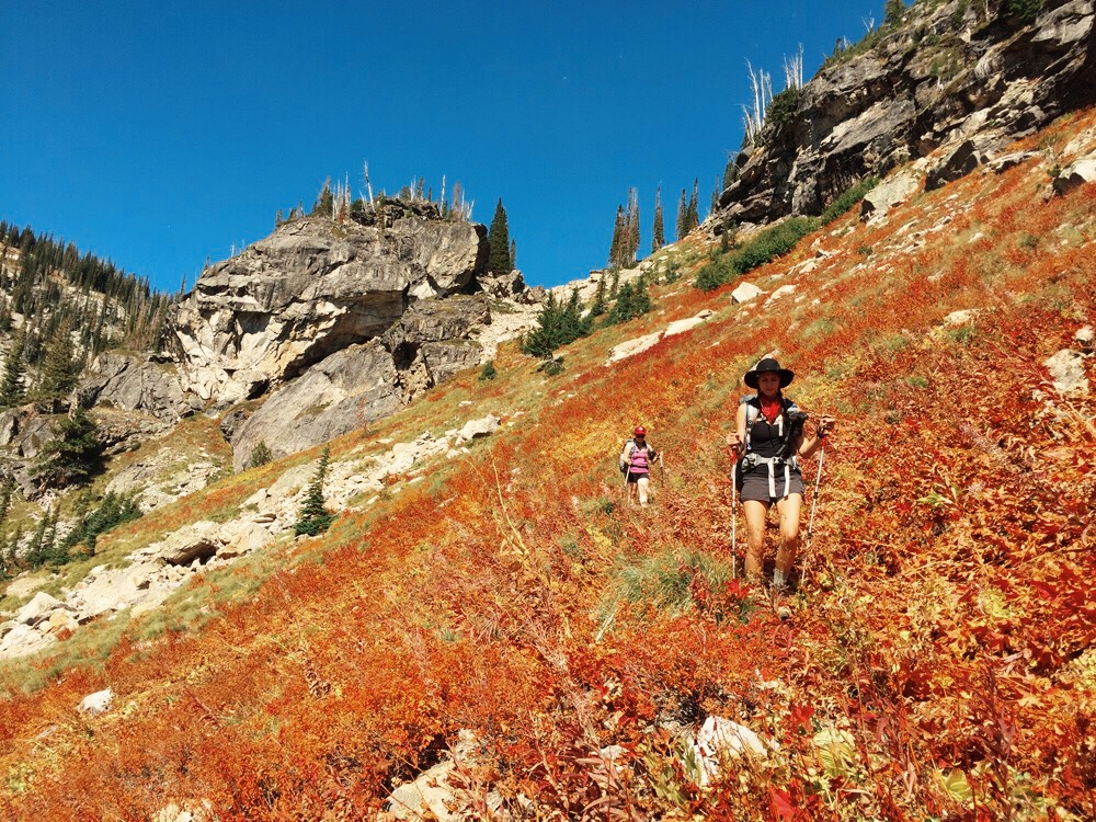 Backpacking the Selway-Bitterroot Wilderness at the Wild Sage Summit