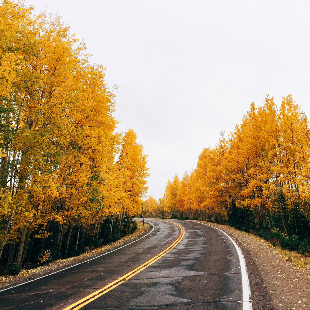 Brilliant fall colors along the Silver Thread Scenic Byway in Colorado