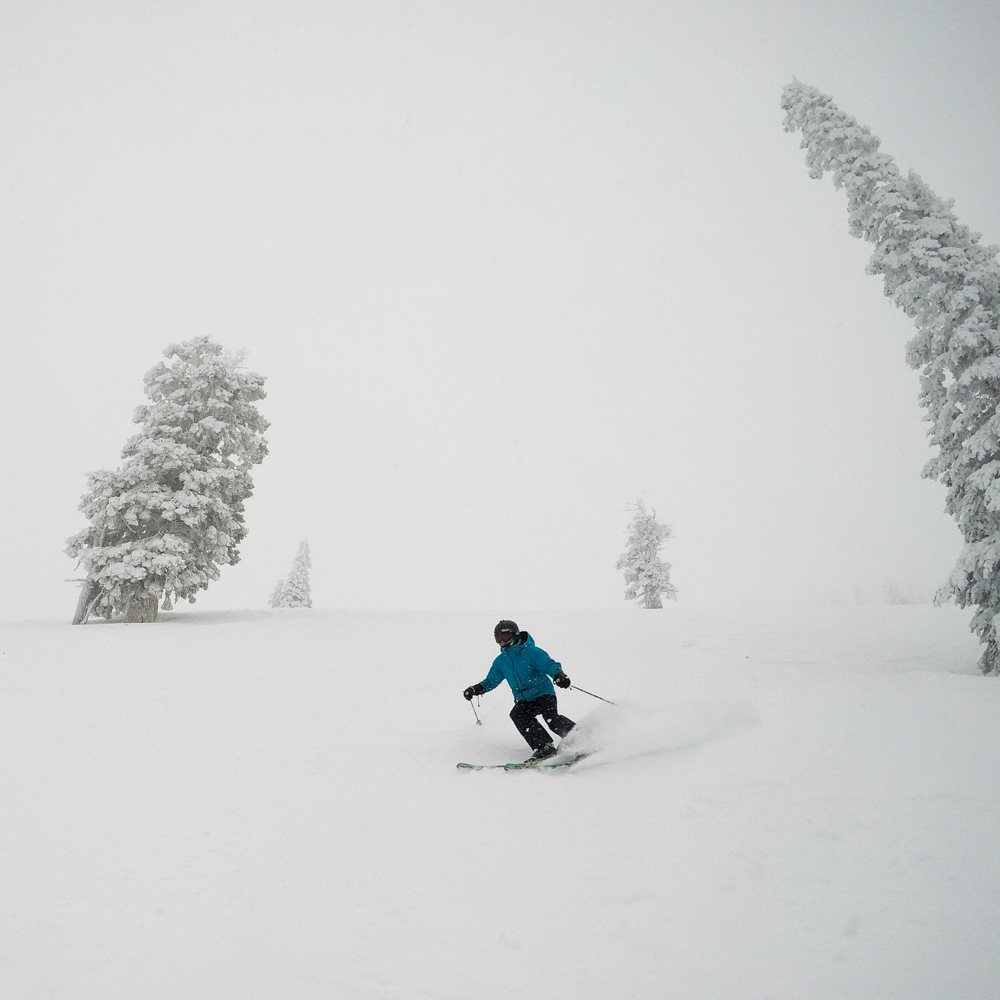 skiing Raven Wood on a powder day at Grand Targhee