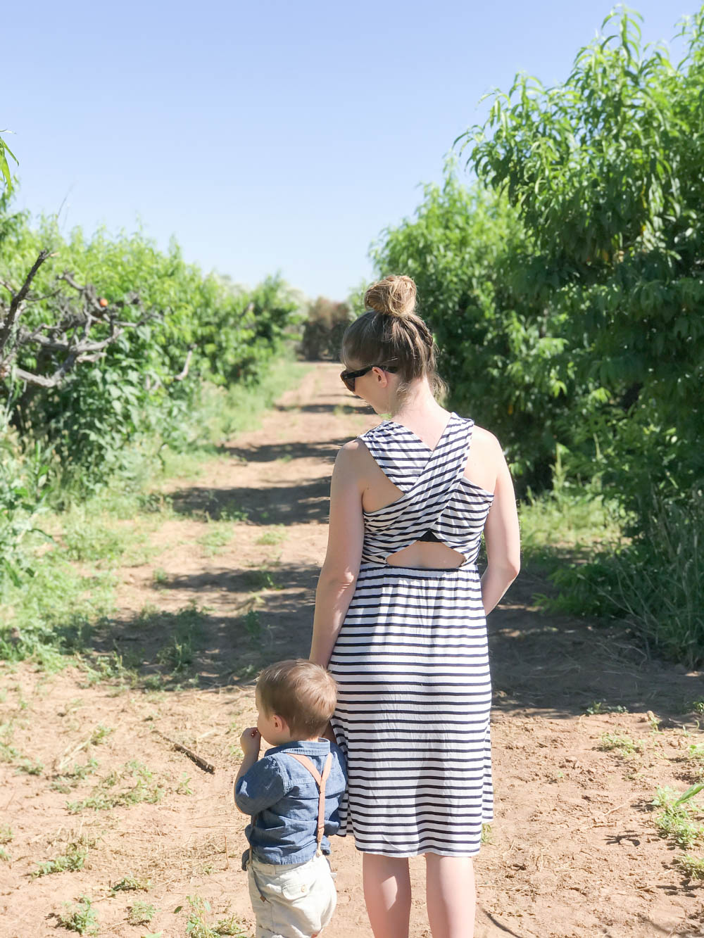 Schnepf Farms Peach Festival | Queen Creek AZ | Mother's Day | Peach Farm