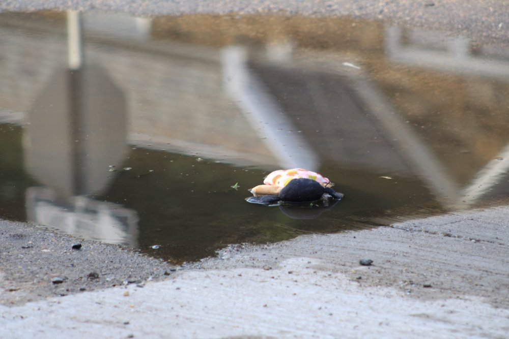A Doll's Life: Face Down, Tossed, Reflecting Her Place in Society.jpg