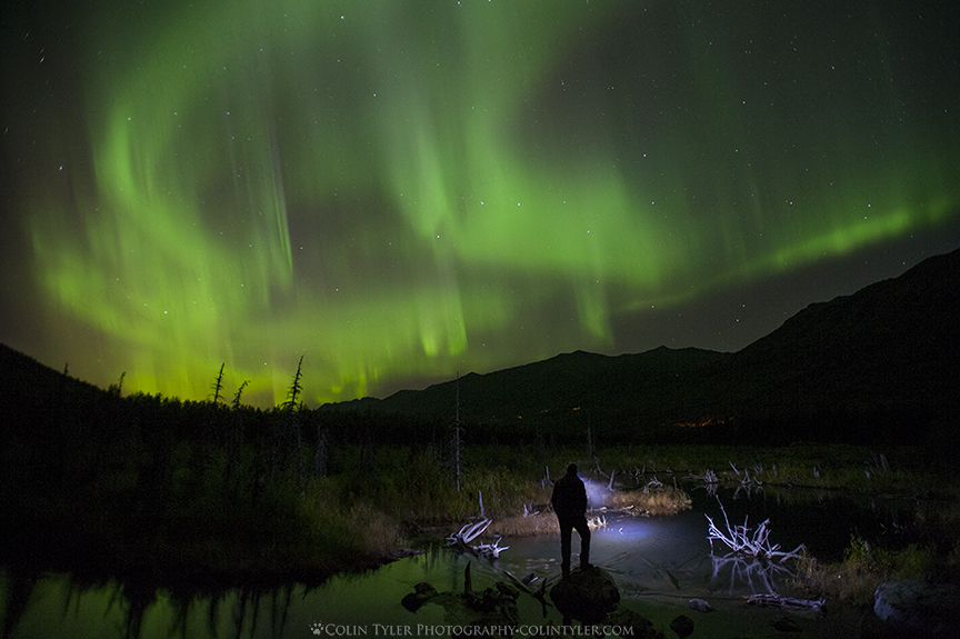 Self portrait under the aurora. Taken at the public use cabin, Eagle River Nature Center, AK.