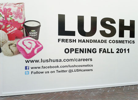 Photo of Lush ad using social media placement correctly