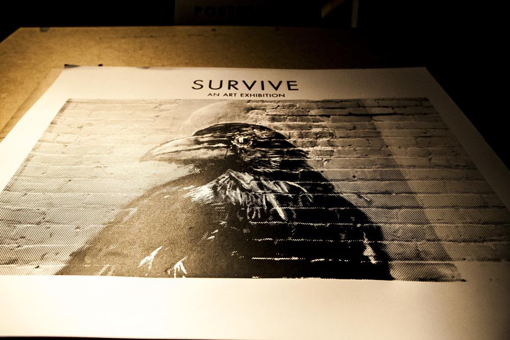 survive34.jpg