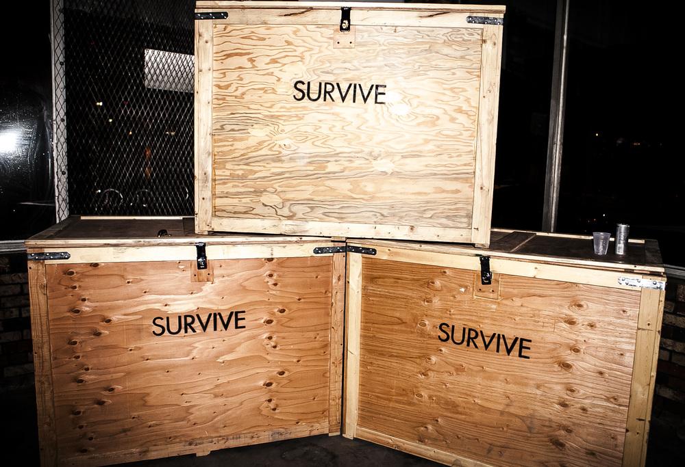 survive38.jpg
