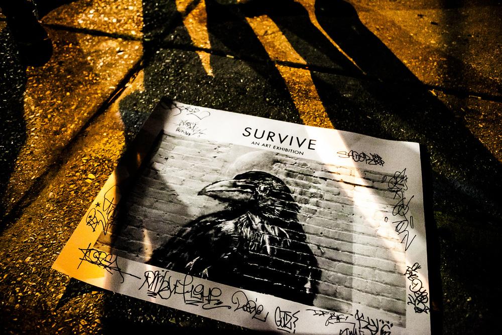 survive95.jpg
