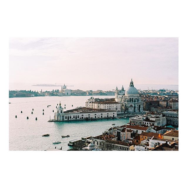 Venice is an oil painting. View of the basilica Santa Maria della Salute from the campanile San Marco. #leica #kodak #film #venice