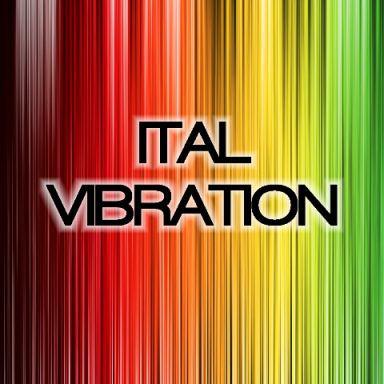 Ital vibration_compressed.jpg