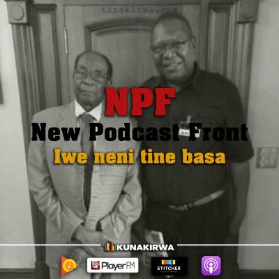 NPF_Zimbabwe_Radio_Kunakirwa.jpg