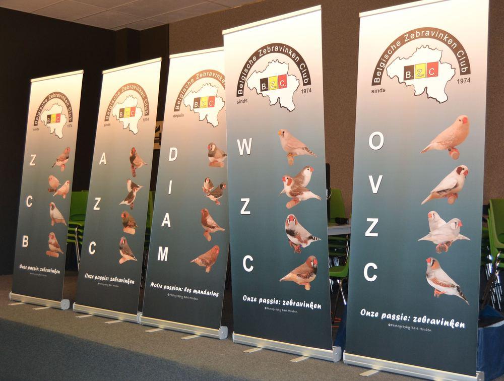 Banners Rayons BZC