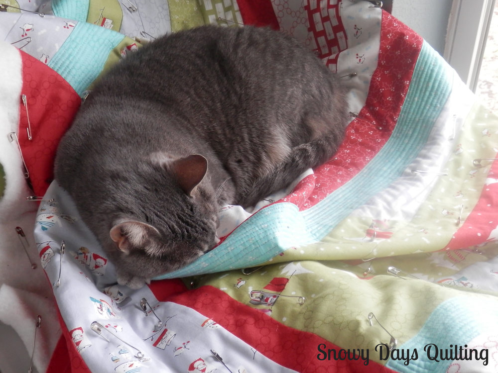 cat napping on quilt
