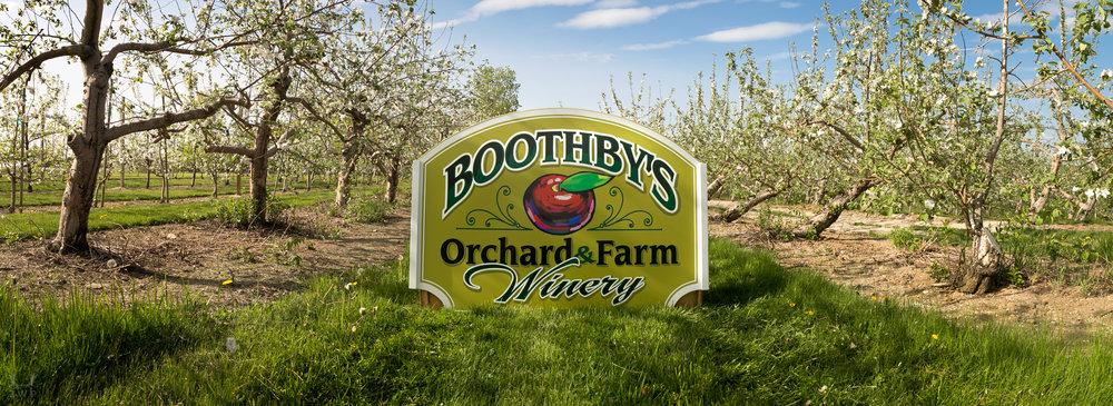 boothbys spring--2.jpg