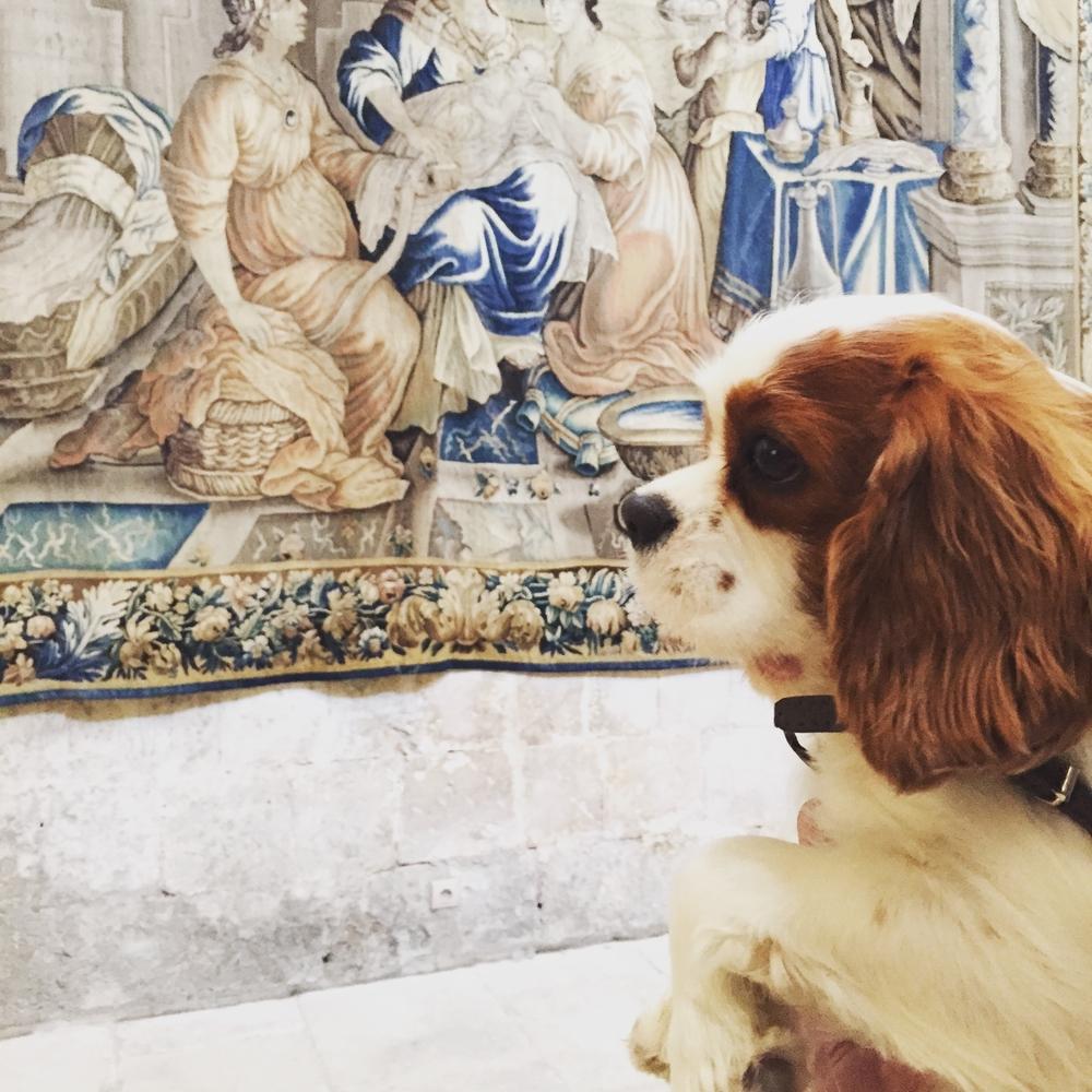 Je profite des belles tapisseries du Cloître Saint-Trophisme. Quelle beauté!
