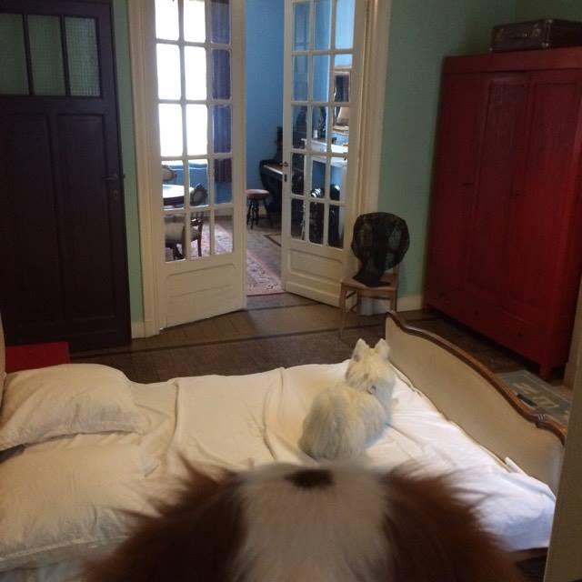 Oscar chez R. Magritte