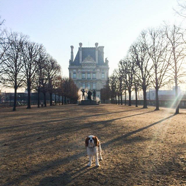 a quelques pas du  LE ROCH HOTEL & SPA , la terrasse des tuileries avec vue sur la seine