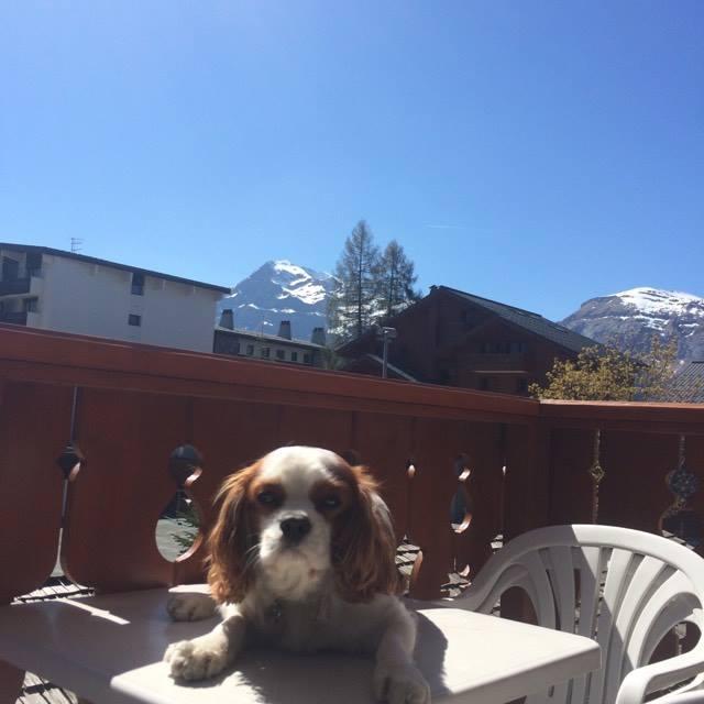 Vue de notre appartement  Résidence Pierre et Vacances Premium Les Fermes du Soleil