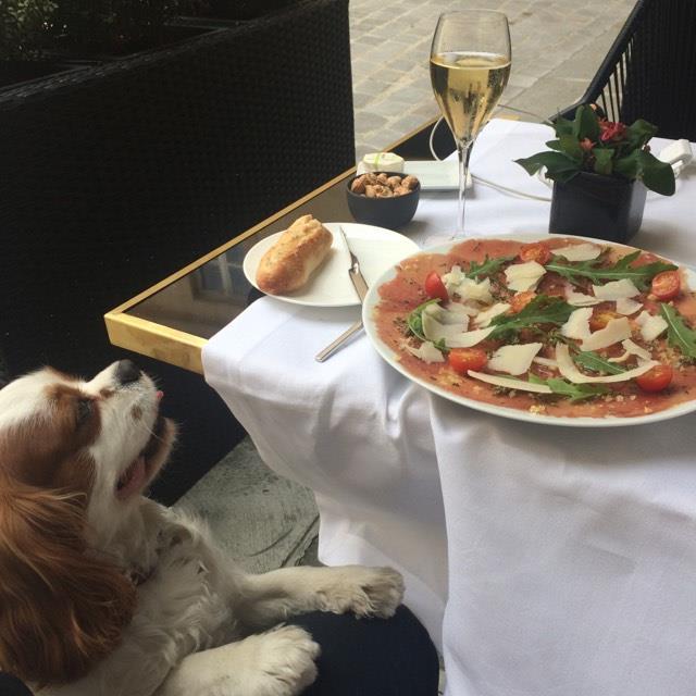 NEW!! Délicieux carpaccio accompagné d'une flûte de champagne Lenoble en terrasse chez Lulli, le restaurant du Grand Hôtel du Palais Royal