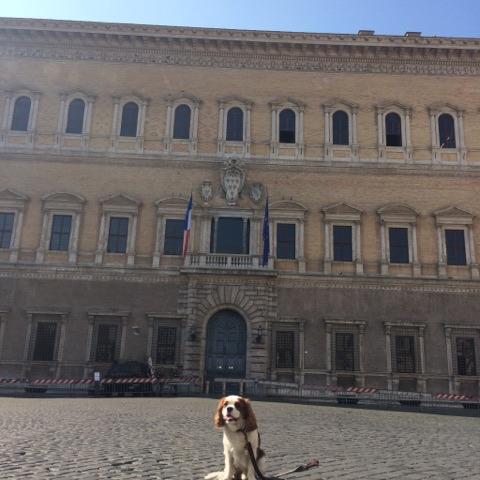 Le Palazzo Farnese, l'Ambassade de France à Rome