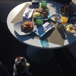 Petit déjeuner sur la terrasse ensoleillé.