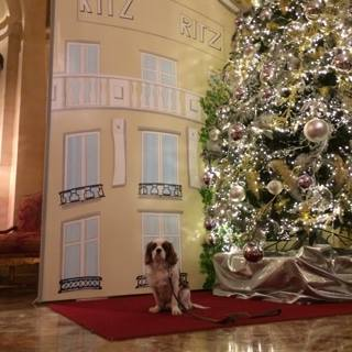 PHOTO CALL POUR OSCAR @ HOTELRITZMADRID  !