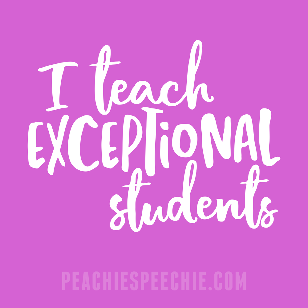 I teach exceptional students! See more styles at peachiespeechie.com