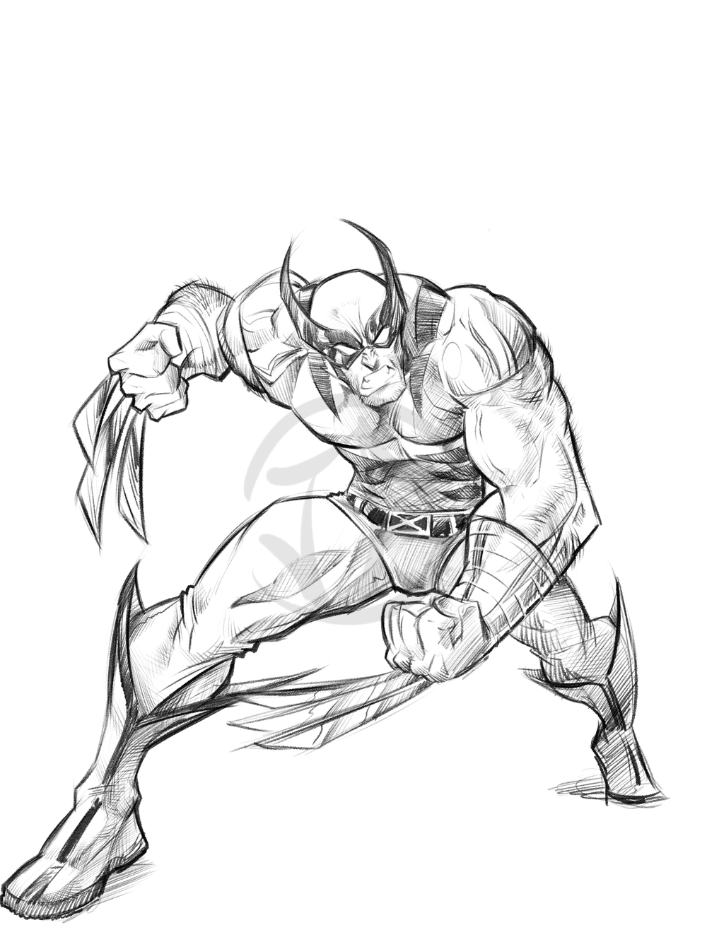 wolverine doodle