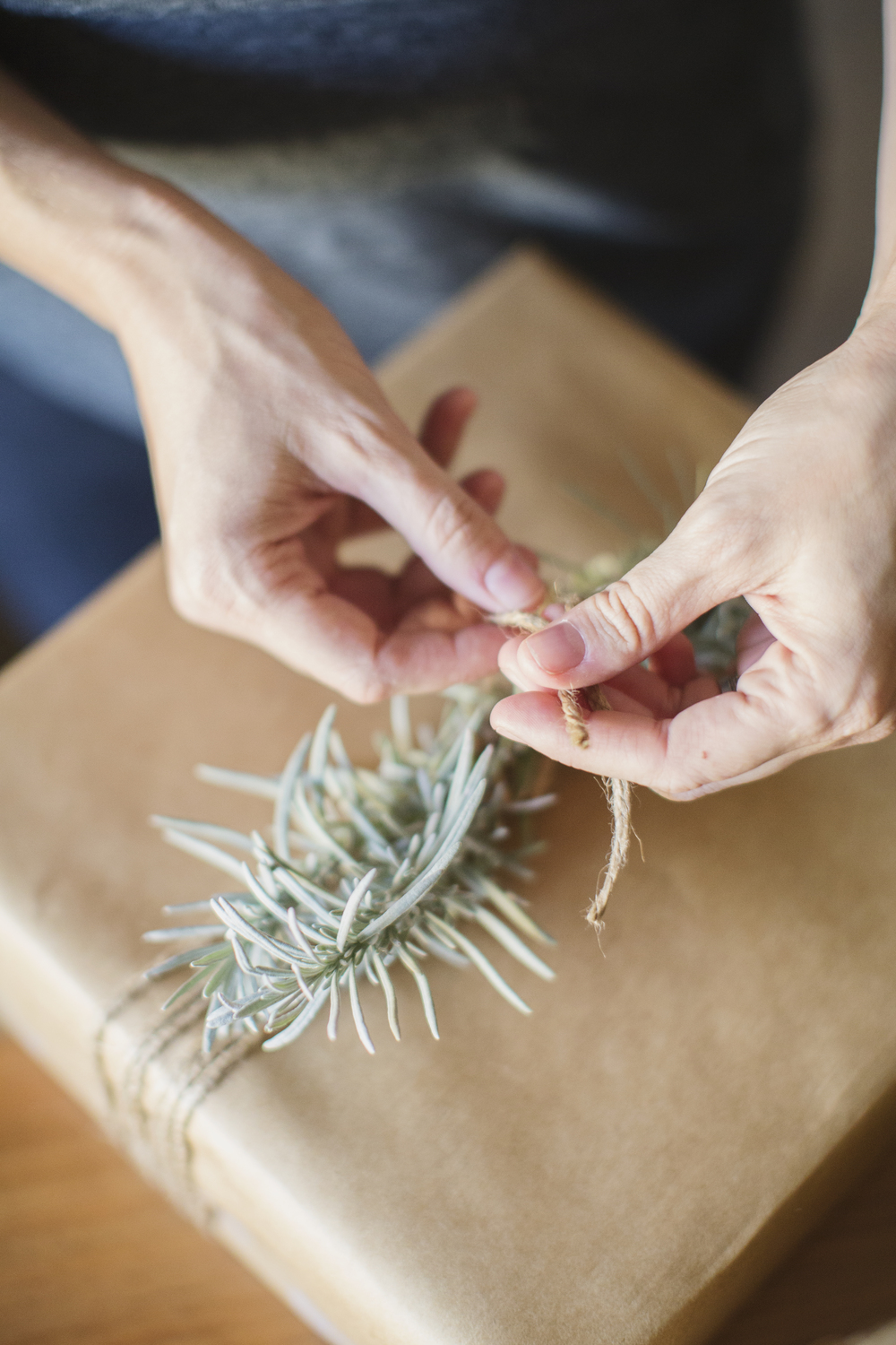 lavender gift wrapping