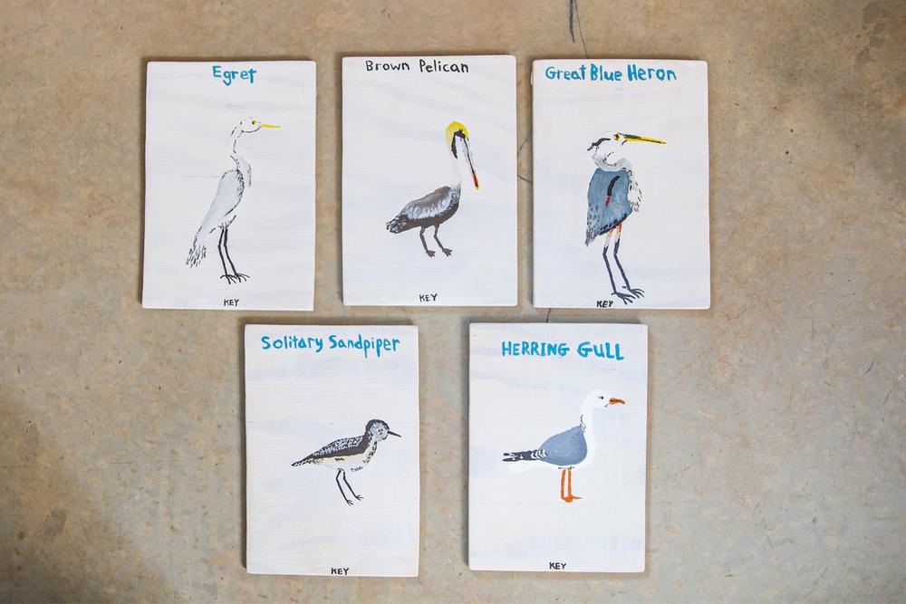 shorebirds of the south artist stephen key