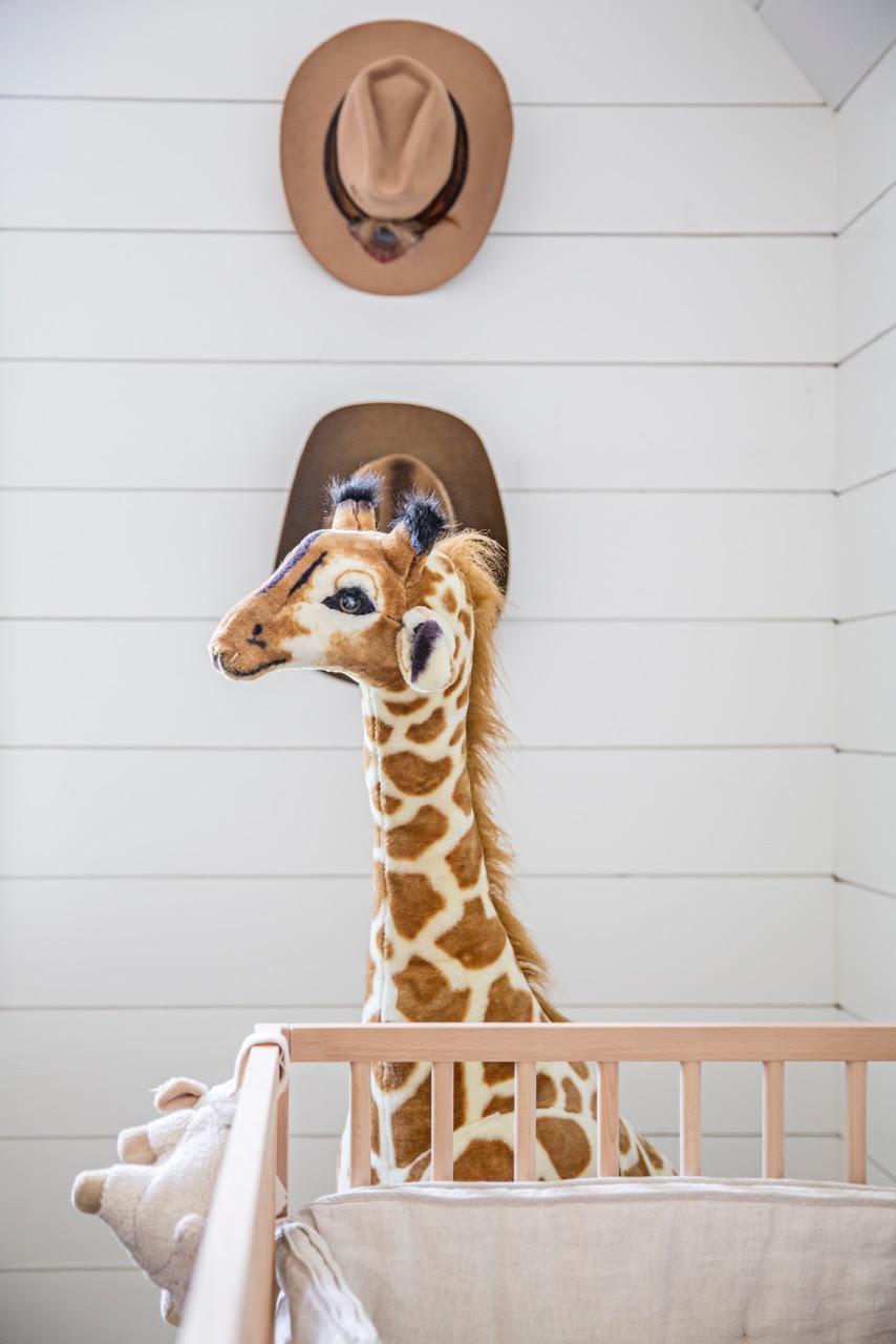 Giraffe and Hats