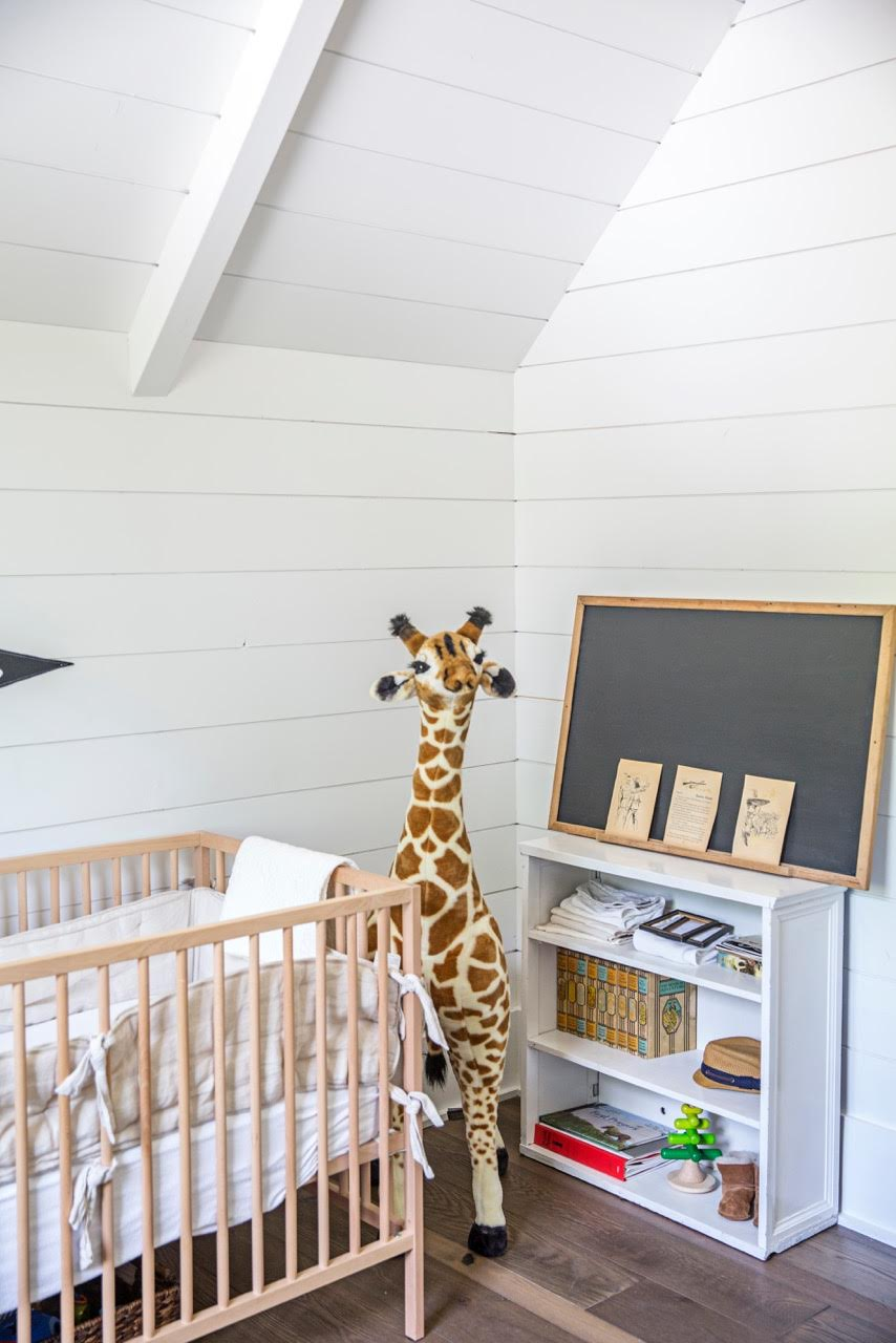 Giraffe and Crib