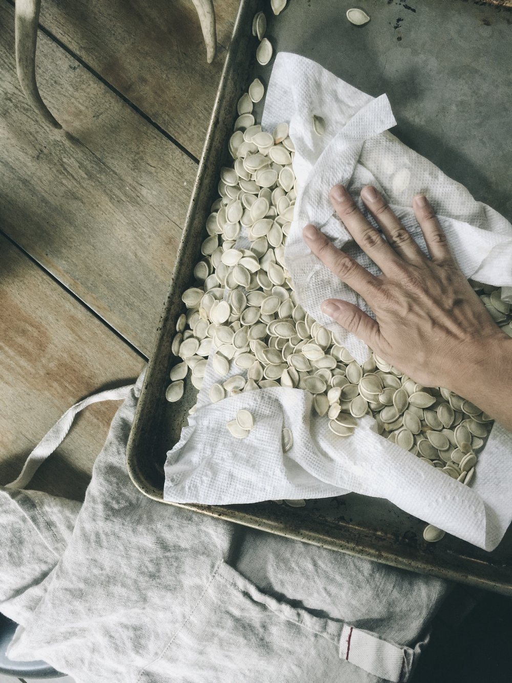 drying pumpkin seeds