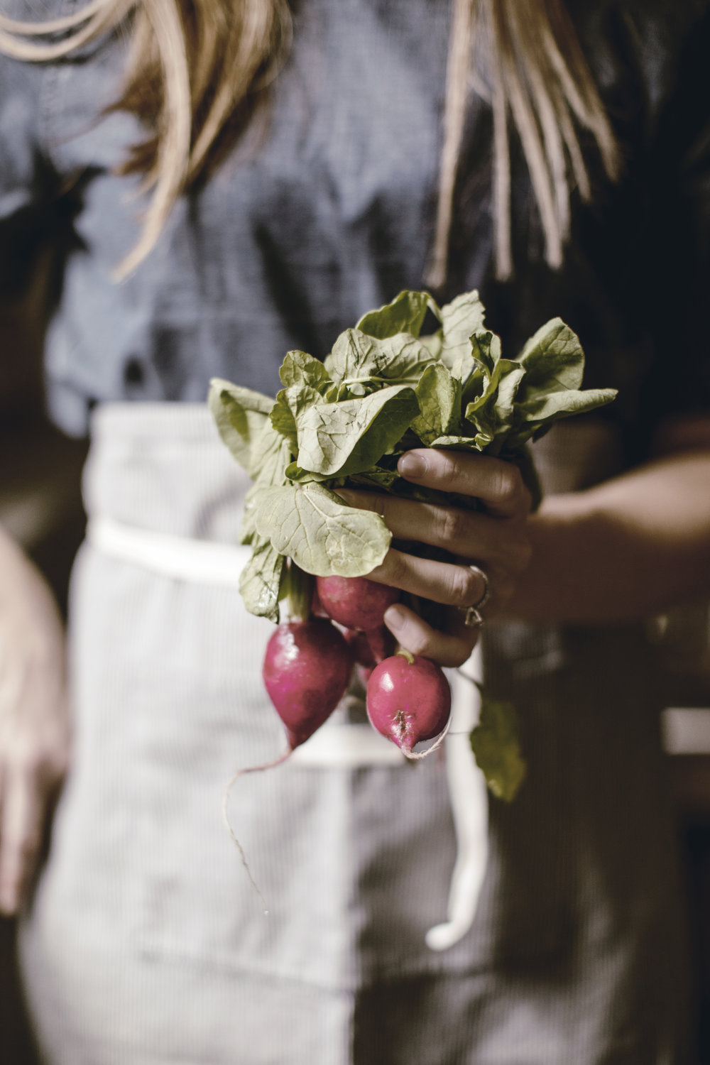 fresh spring radishes from the garden with linen waist apron / heirloomed