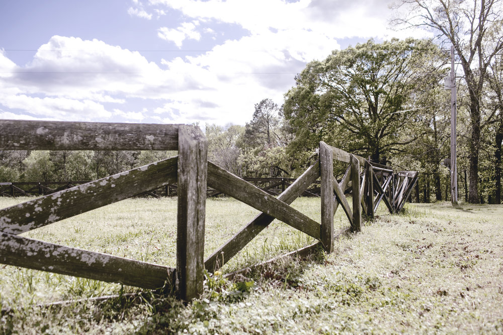 Rustic rail fence at the farm / heirloomed