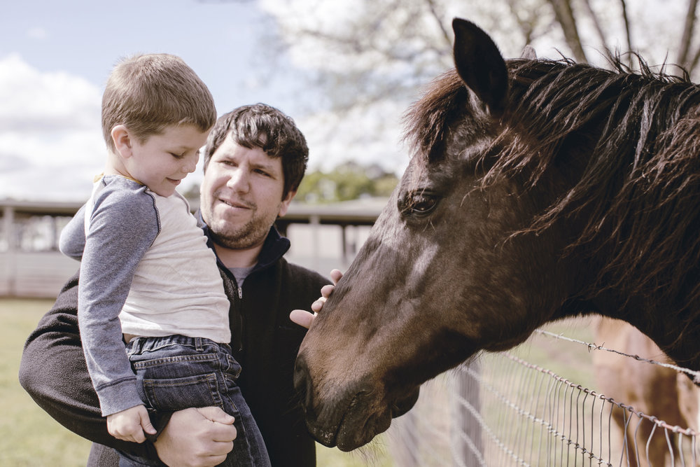 dad and son petting black horse / heirloomed