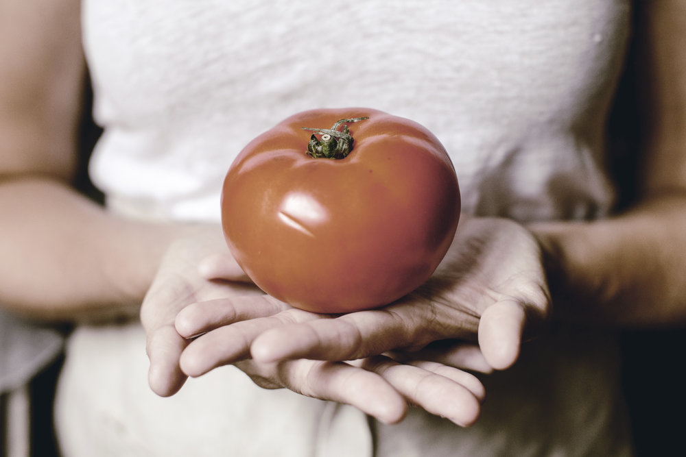 the perfect classic tomato sandwich / heirloomed