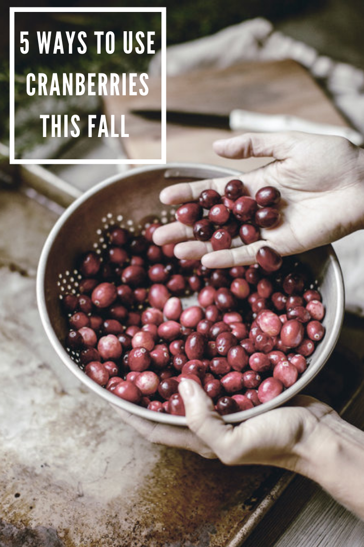 5 Ways to Use Cranberries / heirloomed