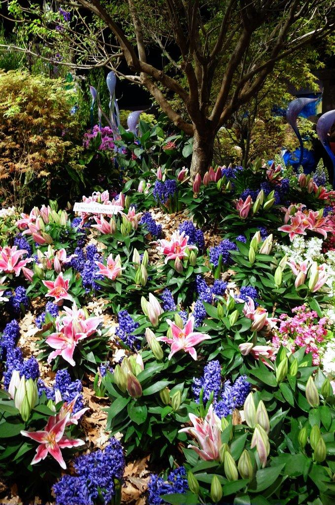 2015-03 Macy's Flower Show (19).jpg