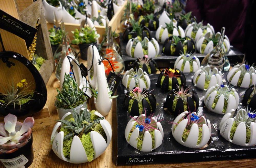 2015-03 Macy's Flower Show (32).jpg
