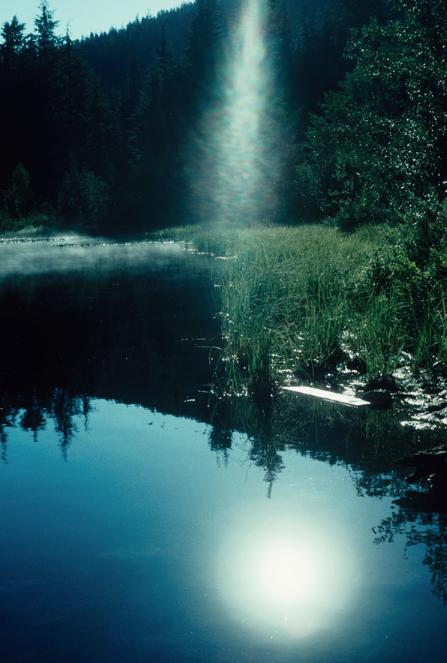 nature30.jpg