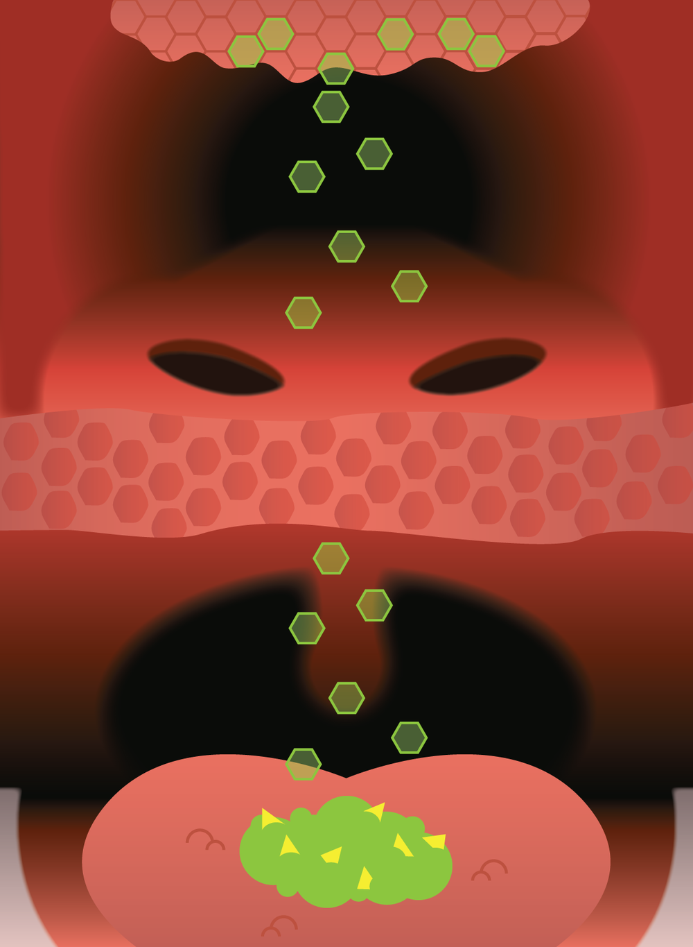 First attempt at illustrating how vapor particles move through the retro nasal canal into the olfactory cells. Vapor particles (the green hexagons) are moving upward from the food on the tongue,  passing a pink membrane (halfway through the image), and then into the nasal passage and connecting with the olfactory cells at the top.