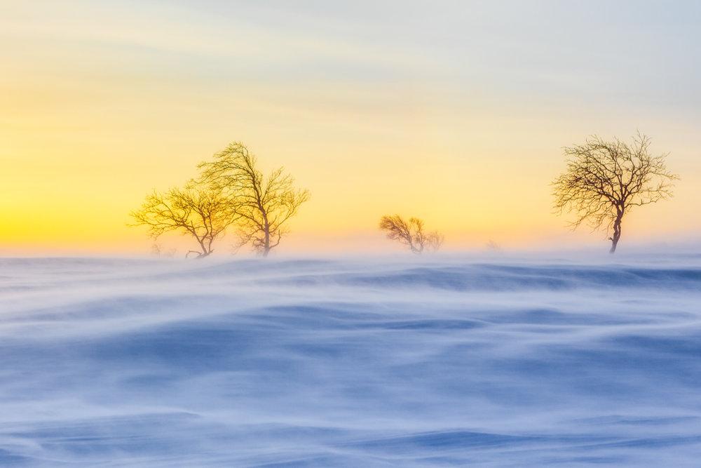 arctic_desert-10.jpg