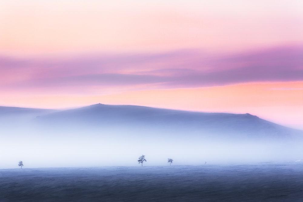 arctic_desert_lapland.jpg