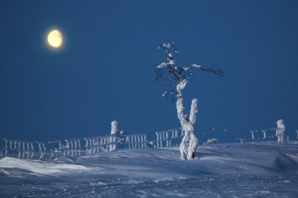 arctic_desert-60.jpg