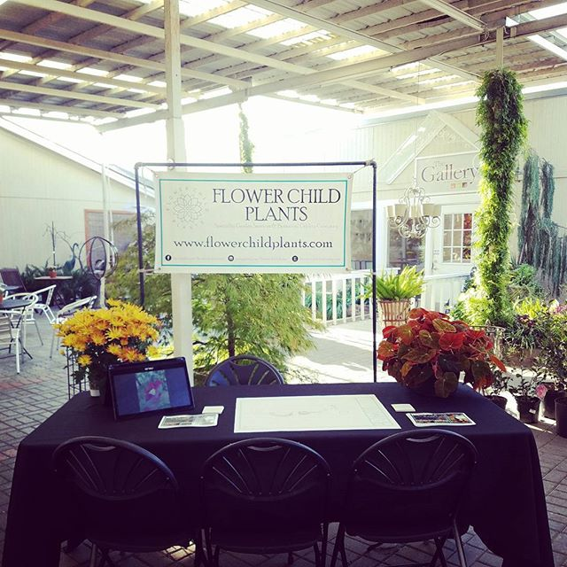 Landscapers meet and greet starting soon at @northhavengardens . Let's chat about your fall landscape goals!