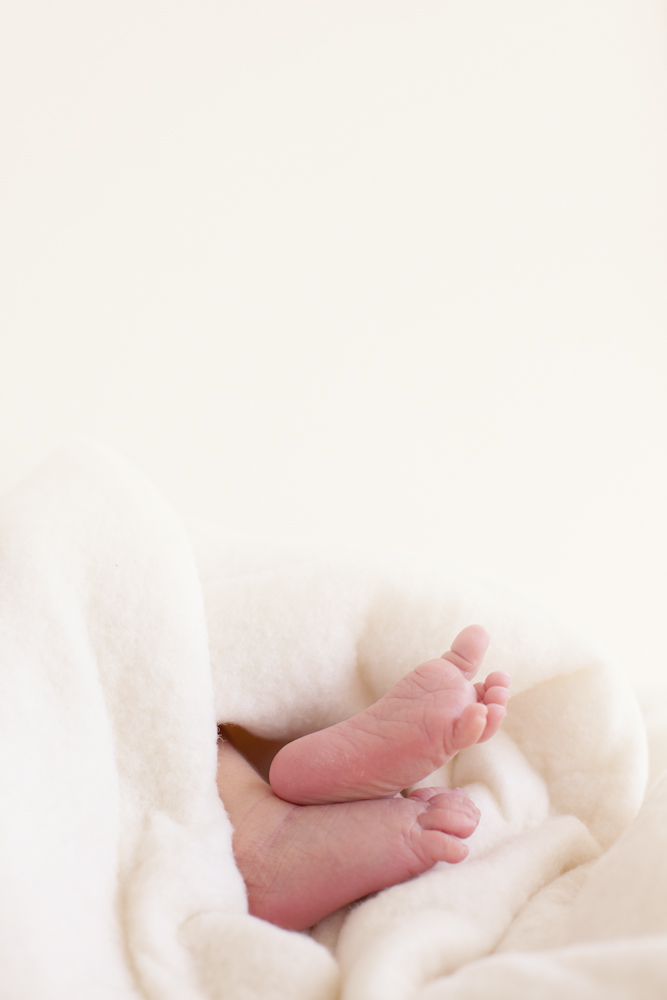 St. Louis Newborn Photography 1 year package4.jpg